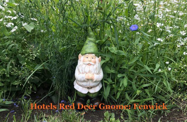 HRD Gnome w-Name-Fenwick