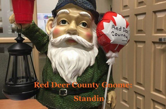 RDCounty Gnome w-name-Standin