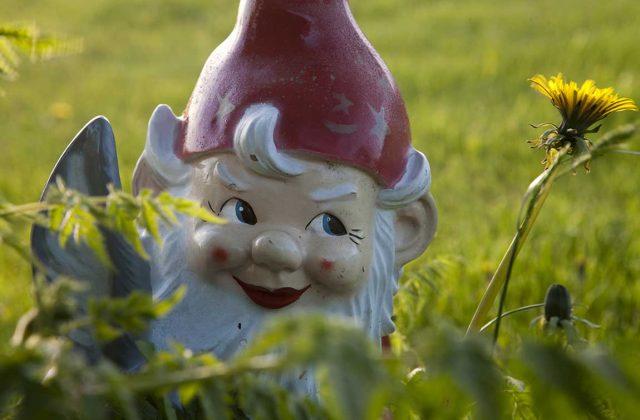 gnome-bg